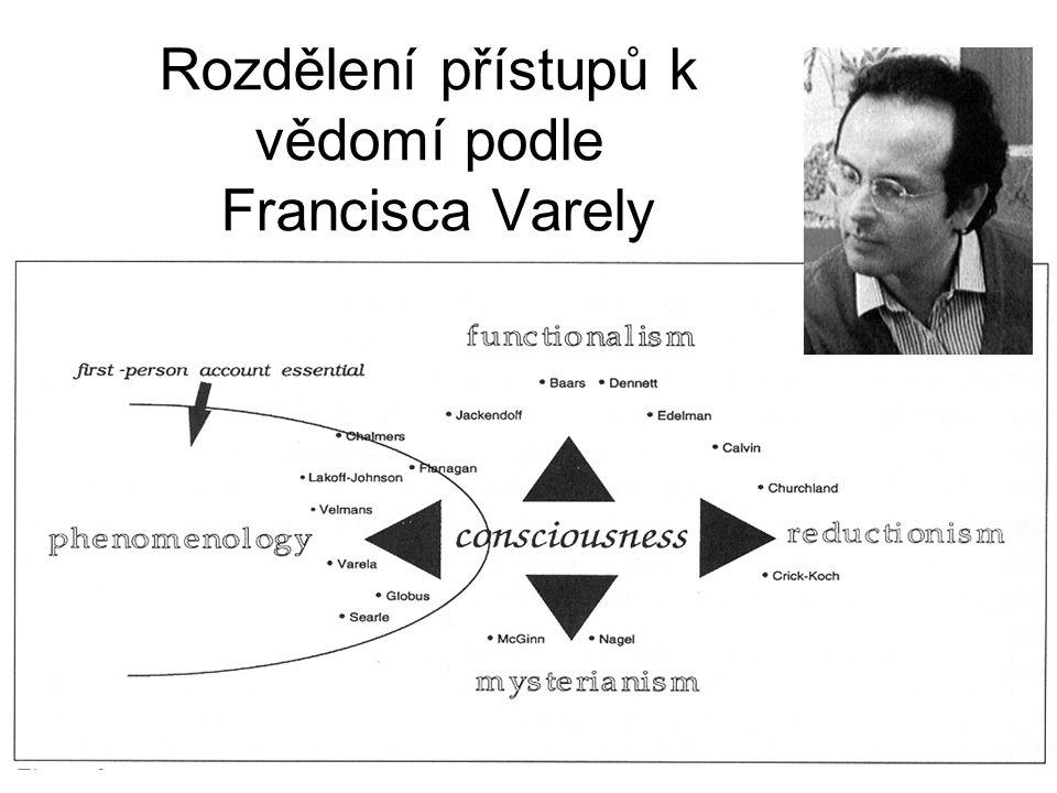 Rozdělení přístupů k vědomí podle Francisca Varely