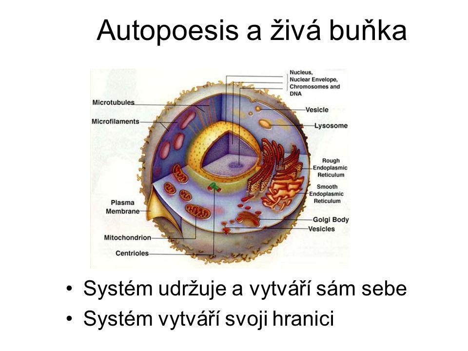 Autopoesis a živá buňka