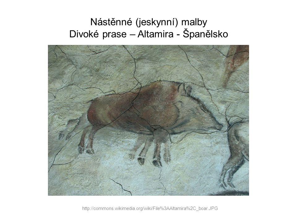 Nástěnné (jeskynní) malby Divoké prase – Altamira - Španělsko