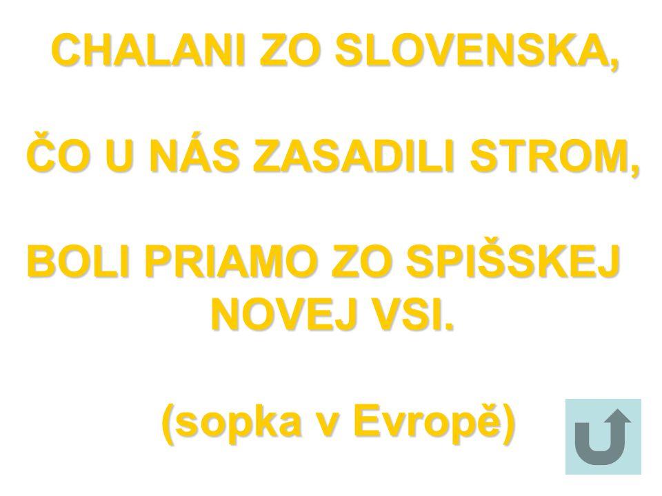 CHALANI ZO SLOVENSKA, ČO U NÁS ZASADILI STROM, BOLI PRIAMO ZO SPIŠSKEJ NOVEJ VSI. (sopka v Evropě)