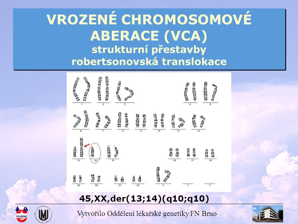 VROZENÉ CHROMOSOMOVÉ ABERACE (VCA) strukturní přestavby robertsonovská translokace
