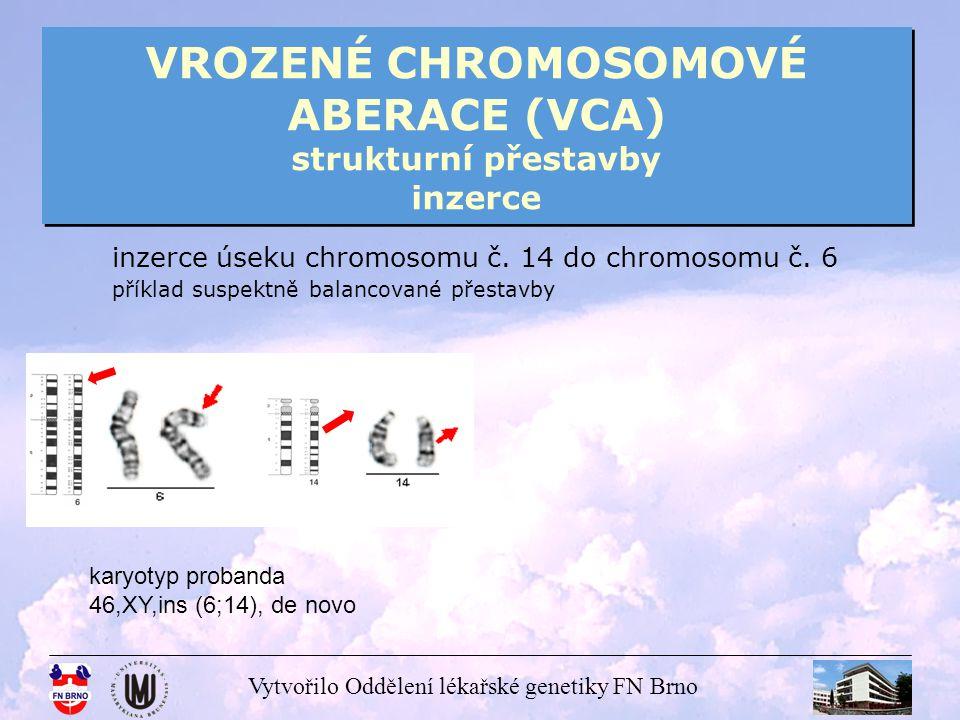 VROZENÉ CHROMOSOMOVÉ ABERACE (VCA) strukturní přestavby inzerce