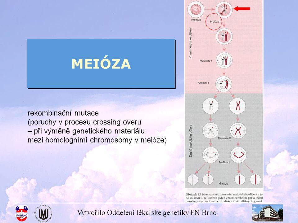 MEIÓZA rekombinační mutace (poruchy v procesu crossing overu