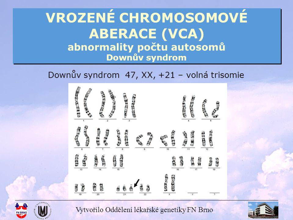 VROZENÉ CHROMOSOMOVÉ ABERACE (VCA) abnormality počtu autosomů Downův syndrom