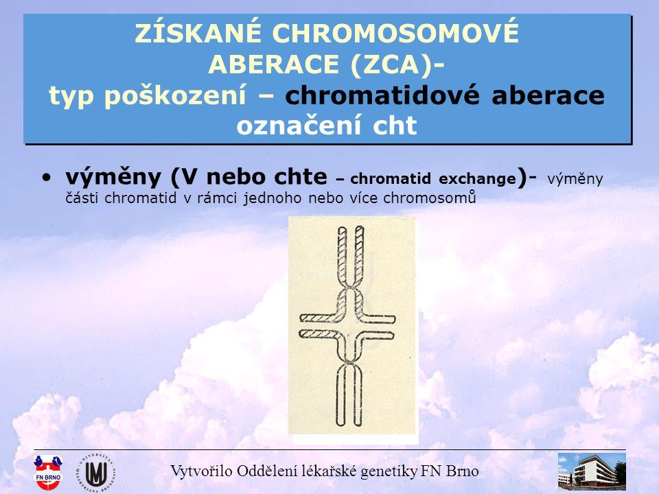 ZÍSKANÉ CHROMOSOMOVÉ ABERACE (ZCA)- typ poškození – chromatidové aberace označení cht