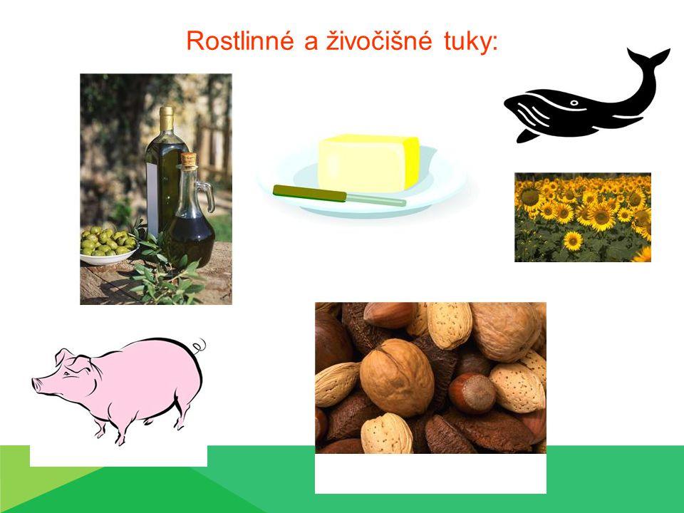 Rostlinné a živočišné tuky: