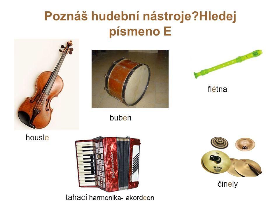 Poznáš hudební nástroje Hledej písmeno E