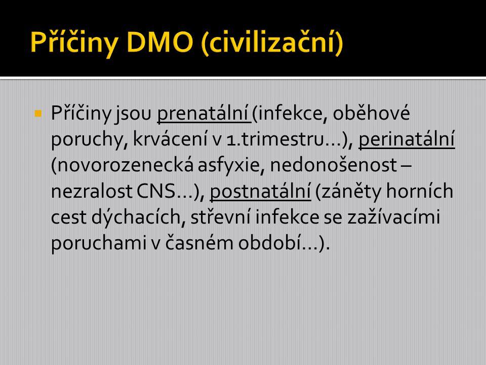 Příčiny DMO (civilizační)