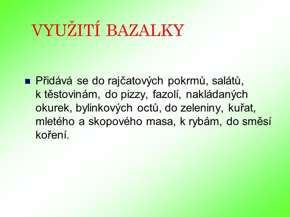 VYUŽITÍ BAZALKY