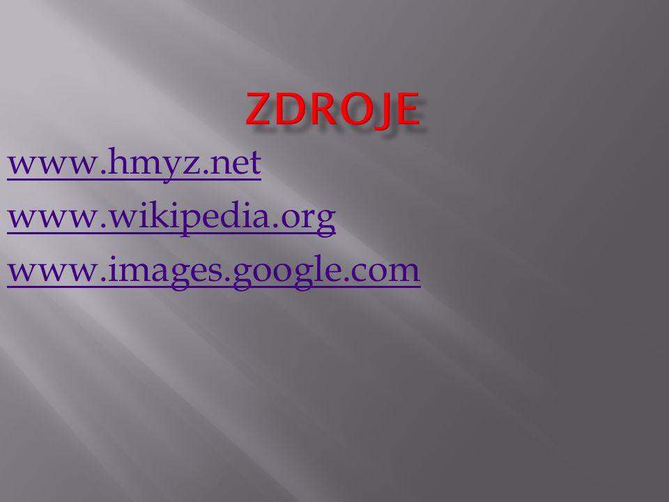 www.hmyz.net www.wikipedia.org www.images.google.com