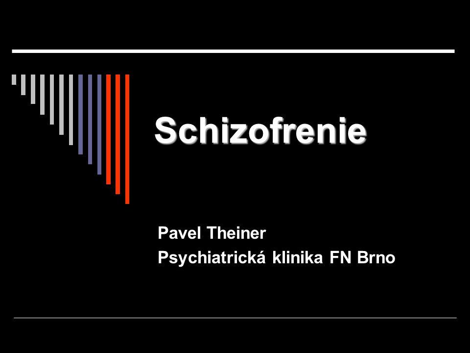 Pavel Theiner Psychiatrická klinika FN Brno