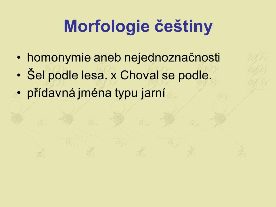 Morfologie češtiny homonymie aneb nejednoznačnosti