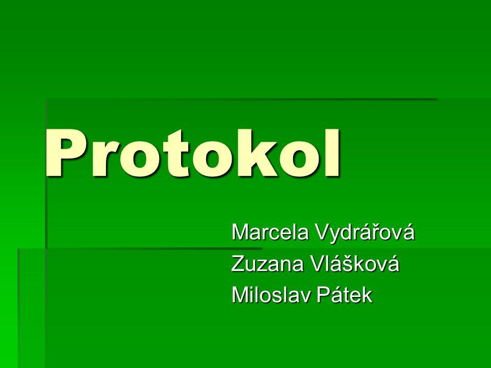 Marcela Vydrářová Zuzana Vlášková Miloslav Pátek