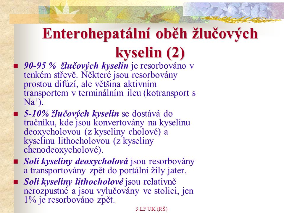 Enterohepatální oběh žlučových kyselin (2)