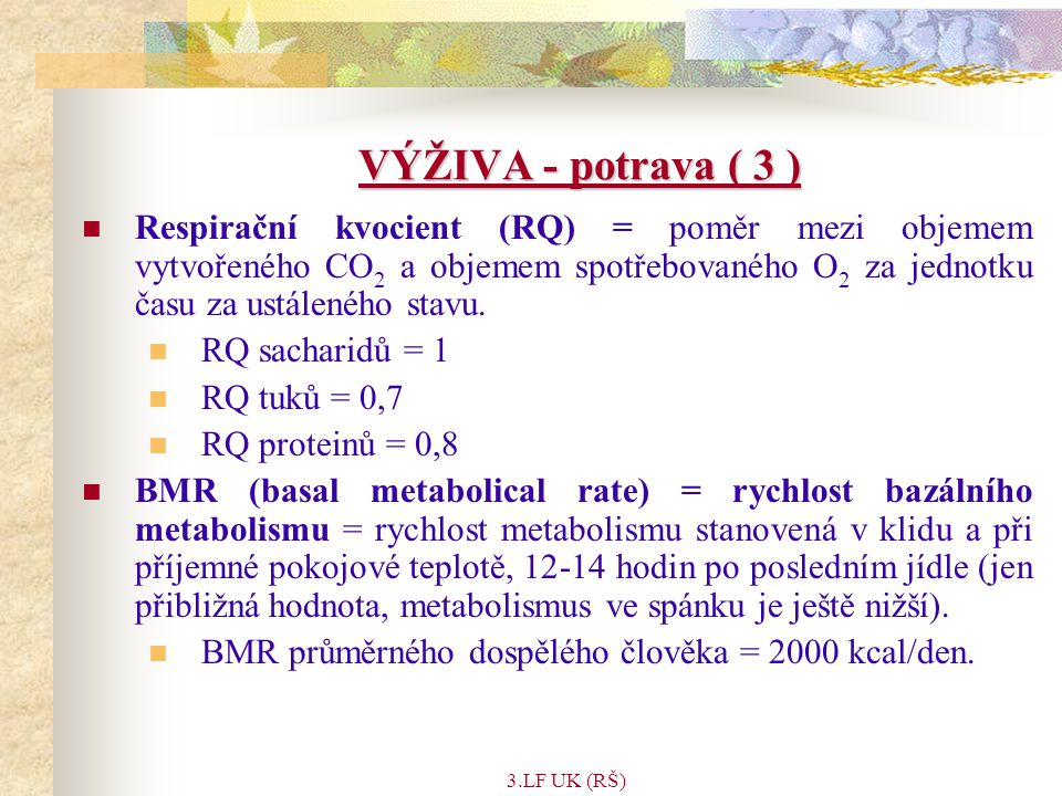 VÝŽIVA - potrava ( 3 )