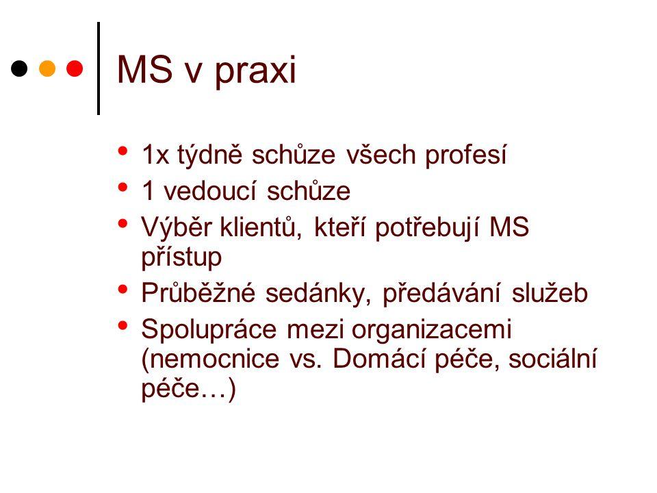 MS v praxi 1x týdně schůze všech profesí 1 vedoucí schůze