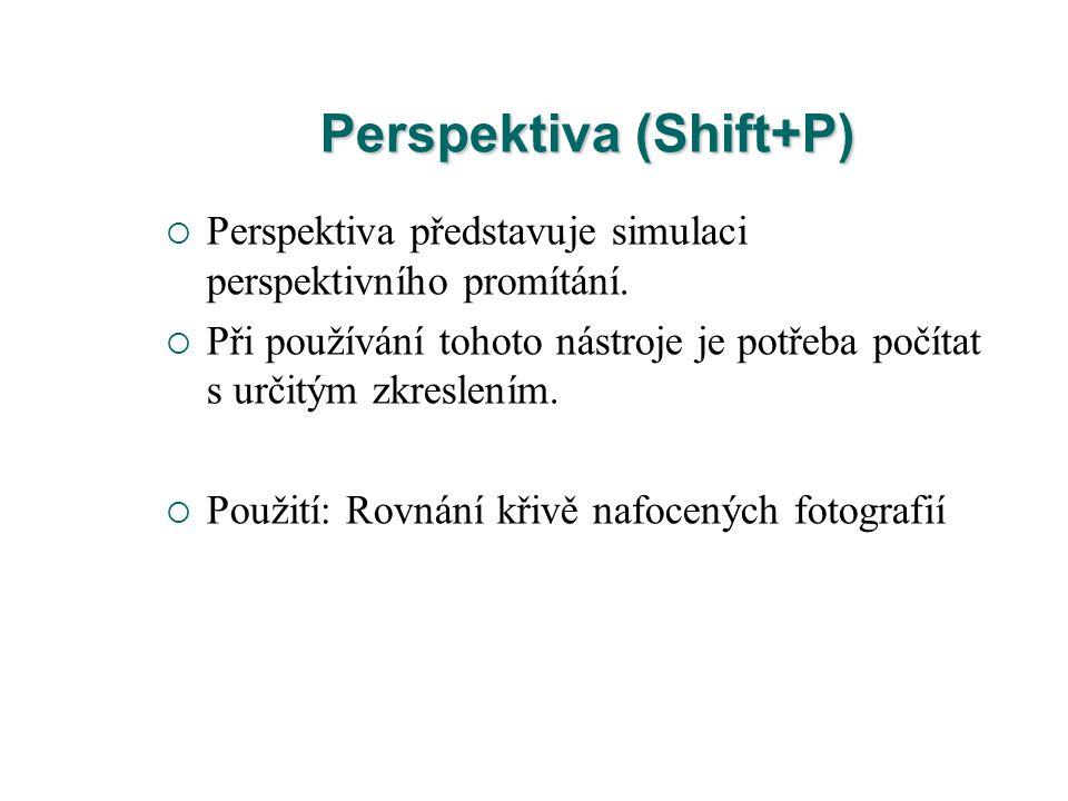 Perspektiva (Shift+P)