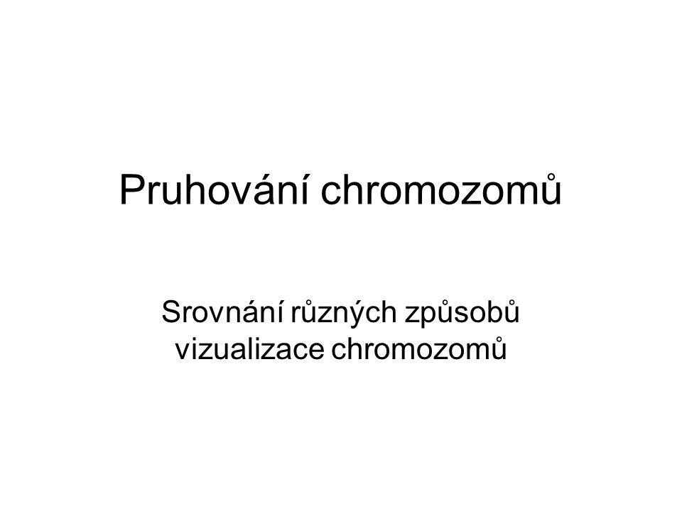 Srovnání různých způsobů vizualizace chromozomů