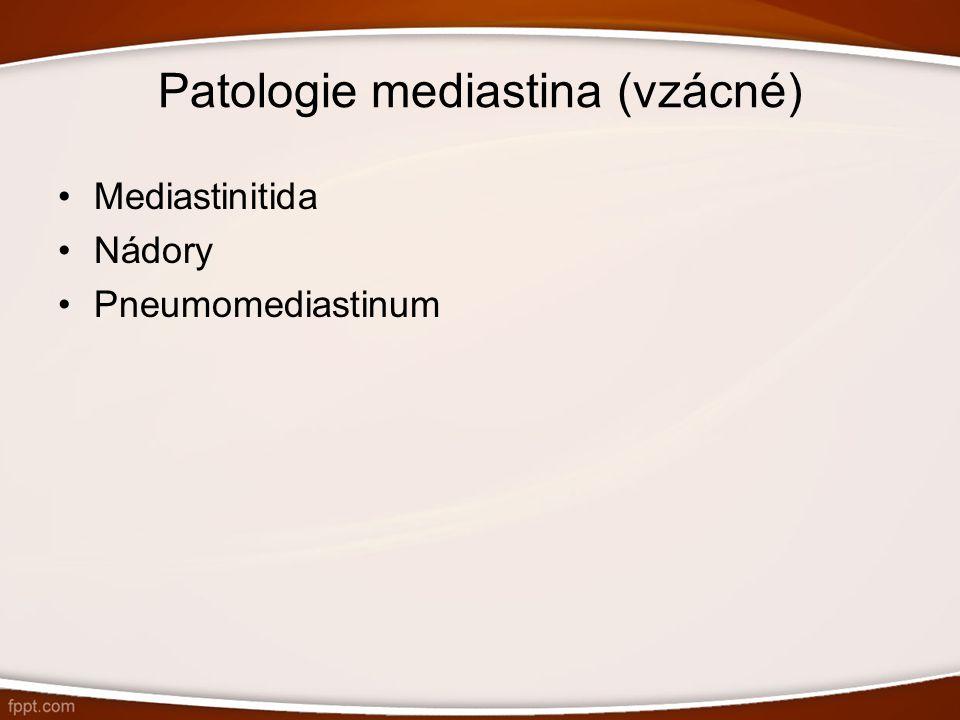 Patologie mediastina (vzácné)