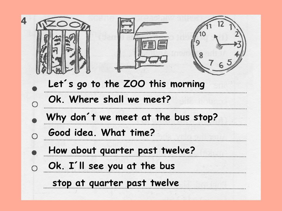 Let´s go to the ZOO this morning