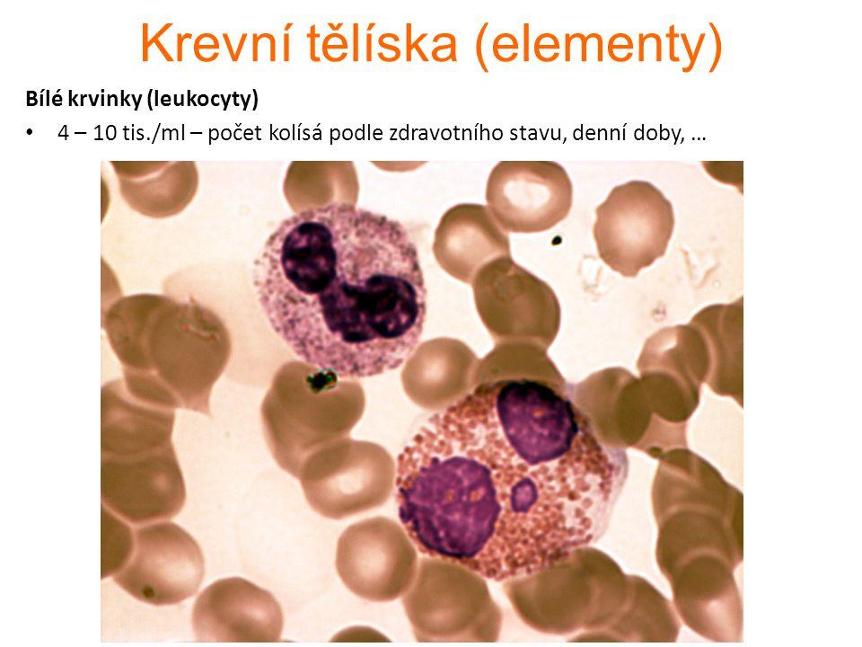 Krevní tělíska (elementy)