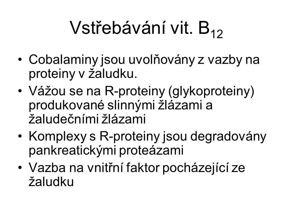 Vstřebávání vit. B12 Cobalaminy jsou uvolňovány z vazby na proteiny v žaludku.