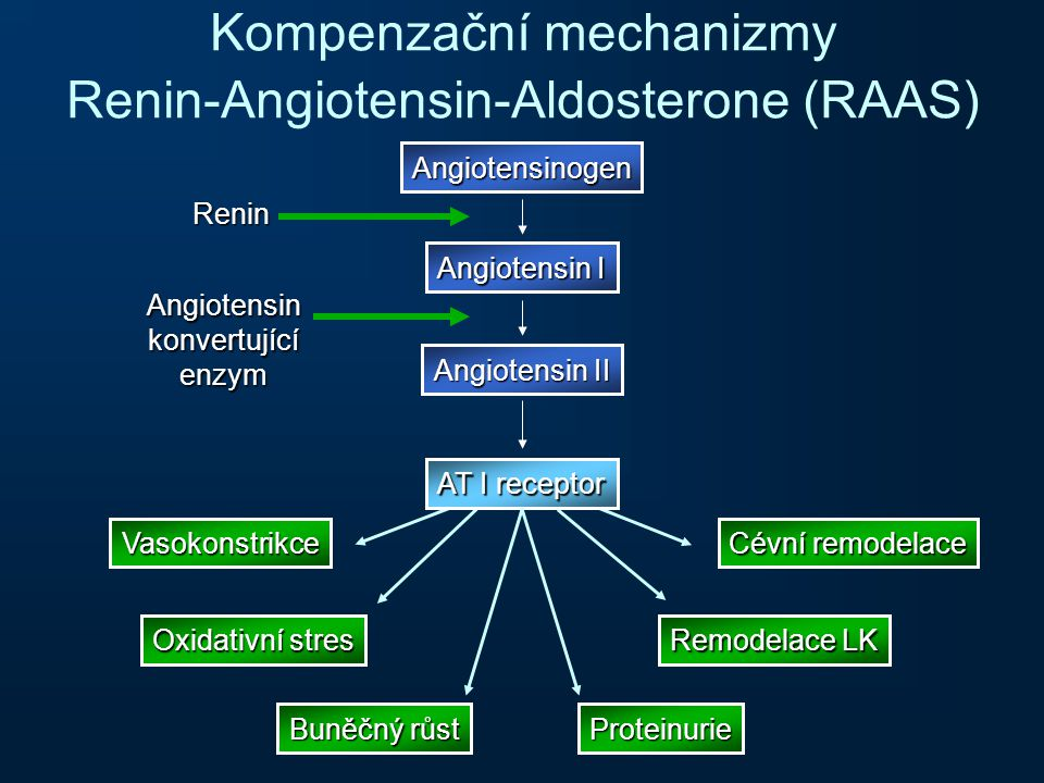Kompenzační mechanizmy Renin-Angiotensin-Aldosterone (RAAS)