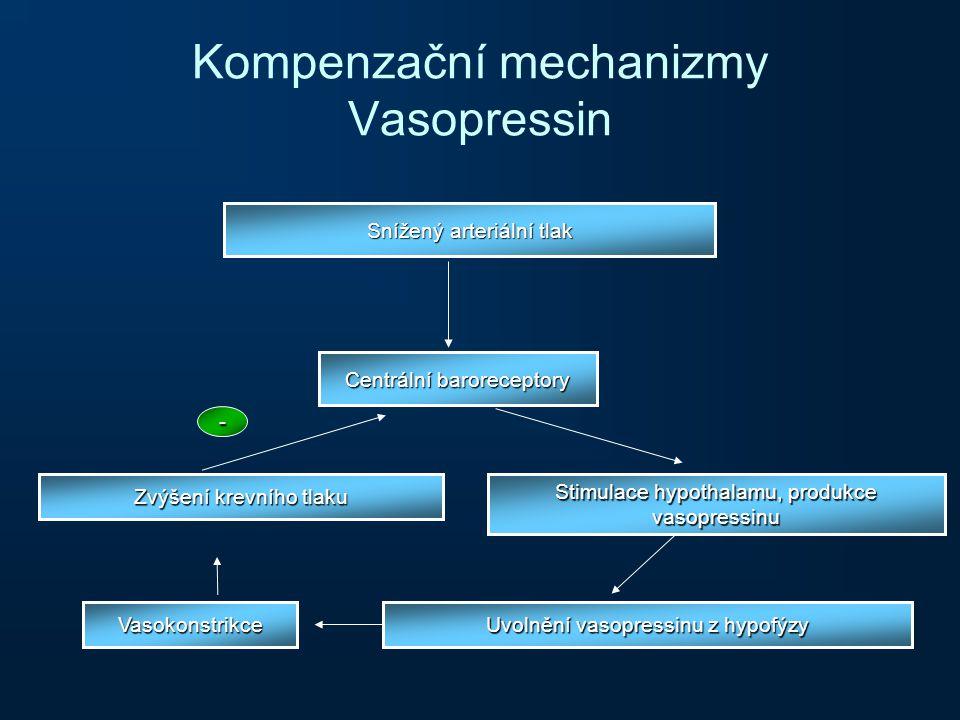 Kompenzační mechanizmy Vasopressin