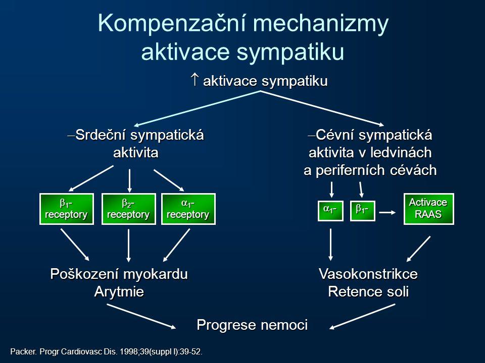 Kompenzační mechanizmy aktivace sympatiku