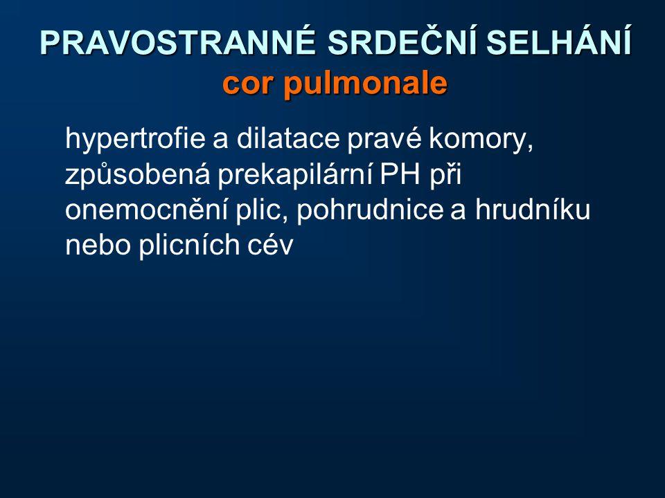 PRAVOSTRANNÉ SRDEČNÍ SELHÁNÍ cor pulmonale