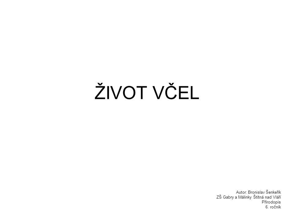 ŽIVOT VČEL Autor: Bronislav Šenkeřík