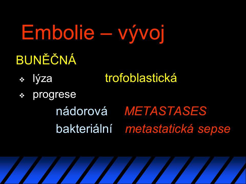 Embolie – vývoj BUNĚČNÁ nádorová METASTASES