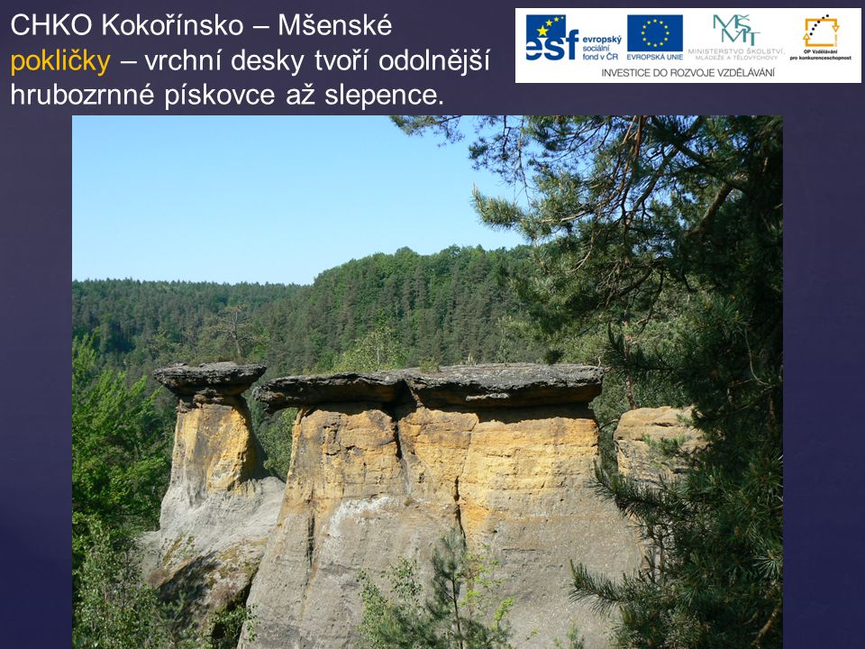 CHKO Kokořínsko – Mšenské pokličky – vrchní desky tvoří odolnější hrubozrnné pískovce až slepence.