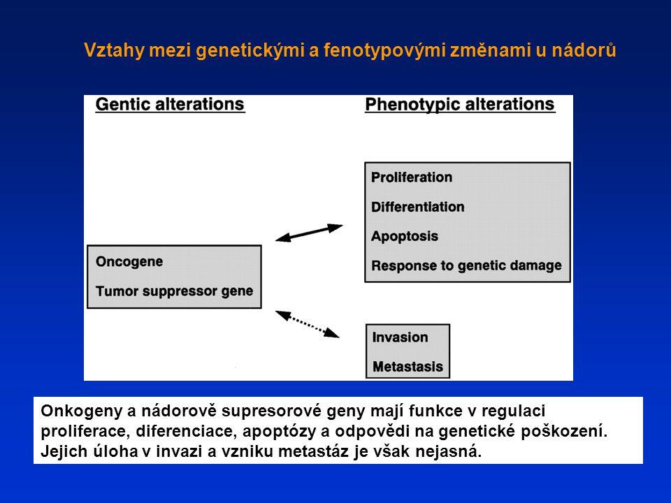 Vztahy mezi genetickými a fenotypovými změnami u nádorů