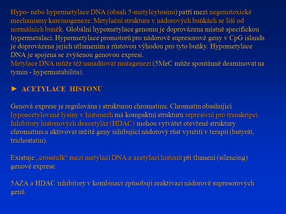 Hypo- nebo hypermetylace DNA (obsah 5-metylcytosinu) patří mezi negenotoxické mechanismy karcinogeneze. Metylační struktura v nádorových buňkách se liší od normálních buněk. Globální hypometylace genomu je doprovázena místně specifickou hypermetalací. Hypermetylace promotorů pro nádorově supresorové geny v CpG islands je doprovázena jejich utlumením a růstovou výhodou pro tyto buňky. Hypometylace DNA je spojena se zvýšenou genovou expresí.