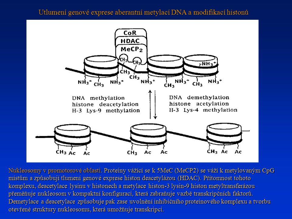 Utlumení genové exprese aberantní metylací DNA a modifikací histonů