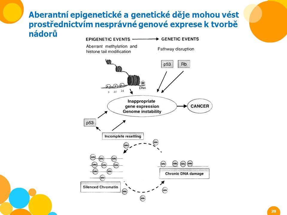 Aberantní epigenetické a genetické děje mohou vést prostřednictvím nesprávné genové exprese k tvorbě nádorů