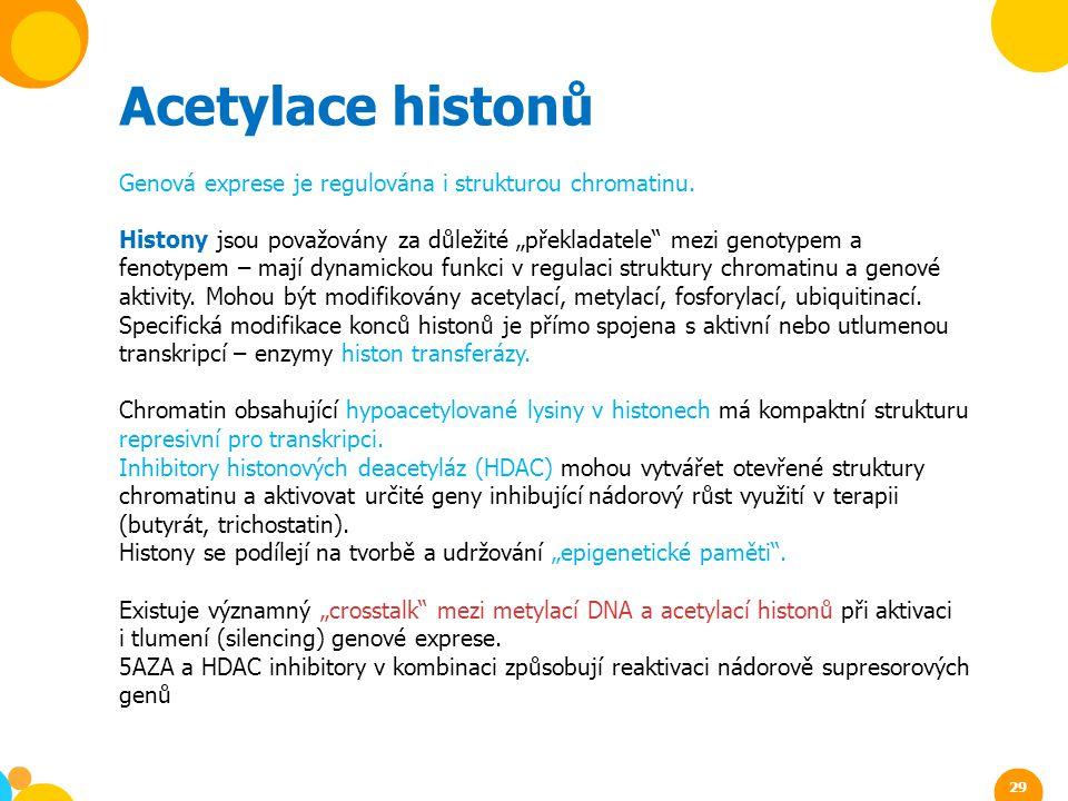 Acetylace histonů Genová exprese je regulována i strukturou chromatinu.