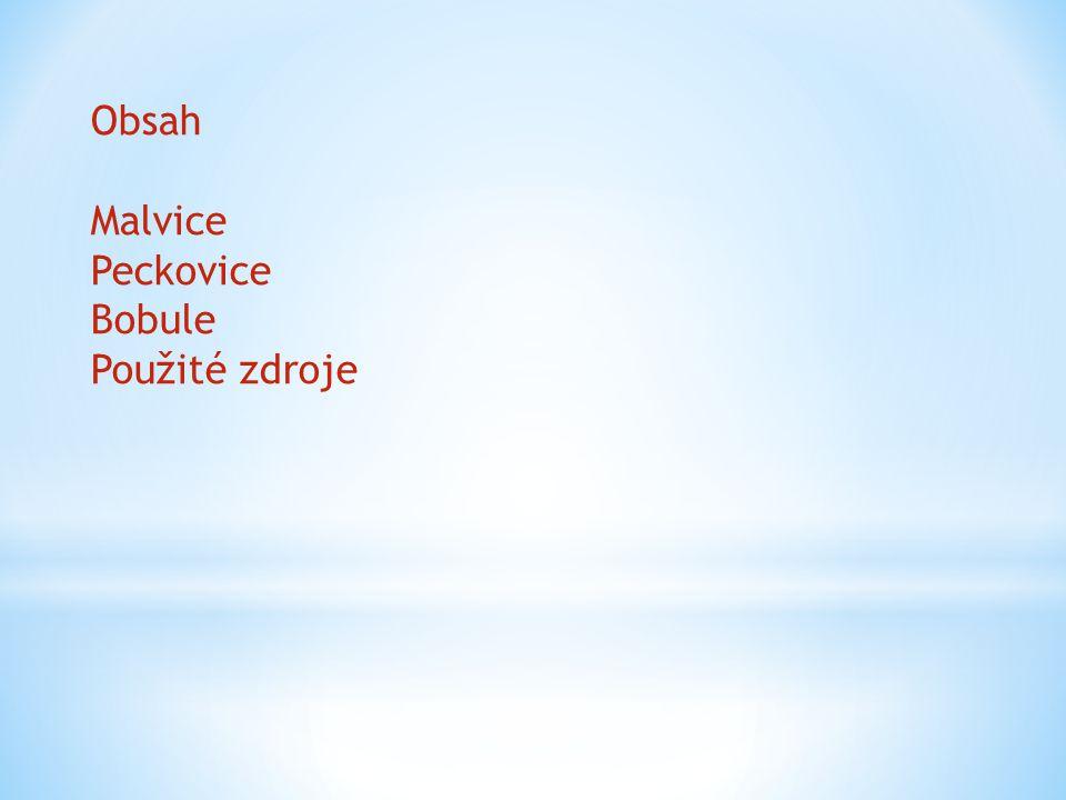Obsah Malvice Peckovice Bobule Použité zdroje