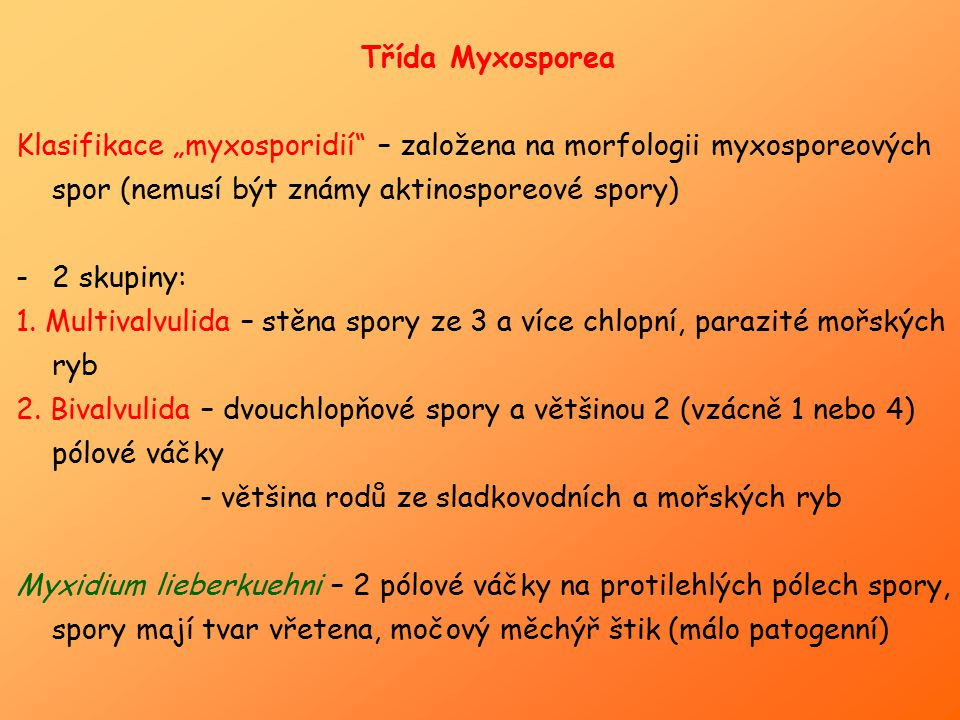 """Třída Myxosporea Klasifikace """"myxosporidií – založena na morfologii myxosporeových spor (nemusí být známy aktinosporeové spory)"""