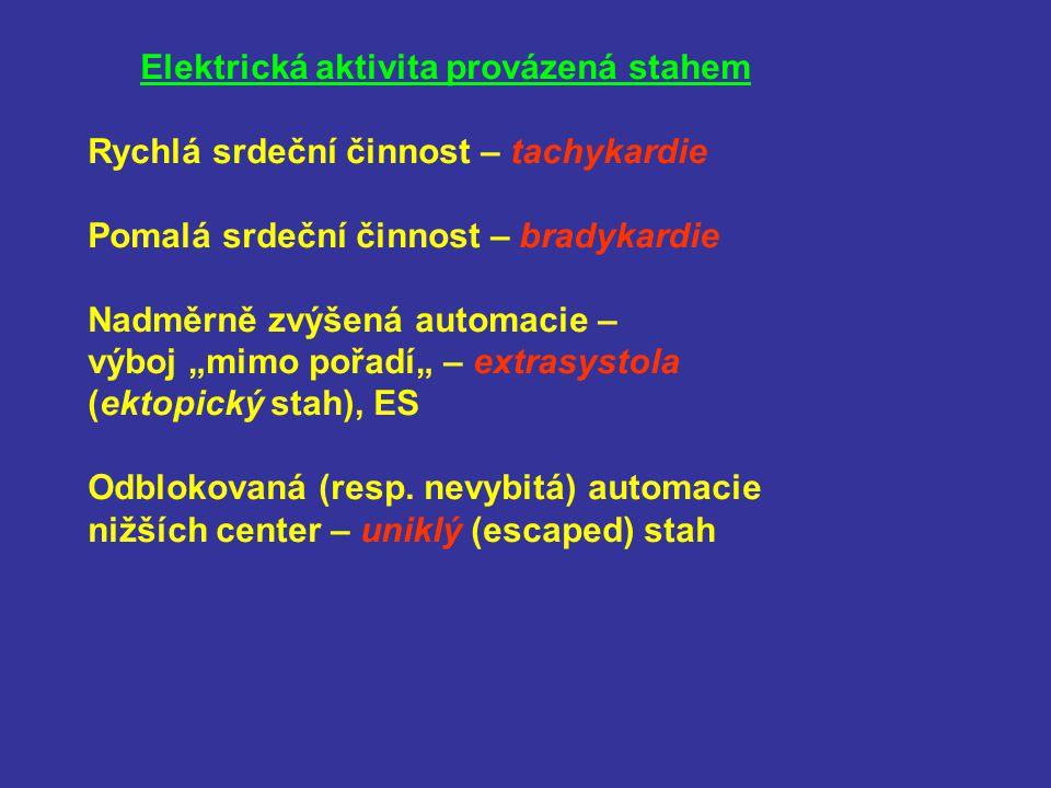 Elektrická aktivita provázená stahem
