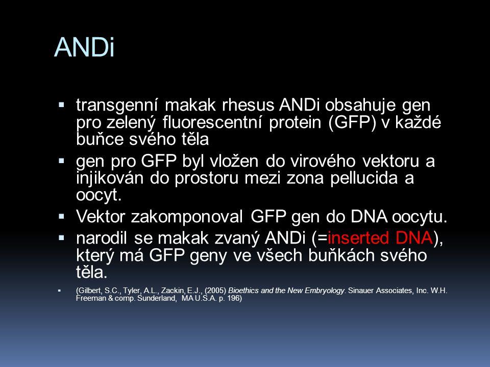 ANDi transgenní makak rhesus ANDi obsahuje gen pro zelený fluorescentní protein (GFP) v každé buňce svého těla.