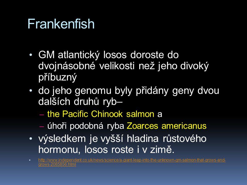 Frankenfish GM atlantický losos doroste do dvojnásobné velikosti než jeho divoký příbuzný.
