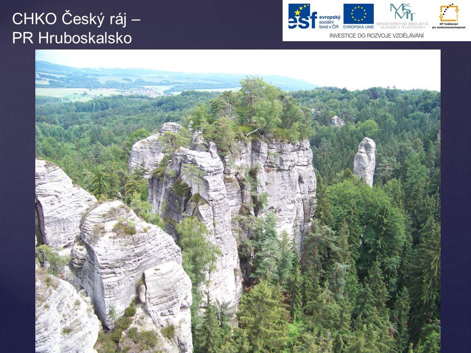 CHKO Český ráj – PR Hruboskalsko