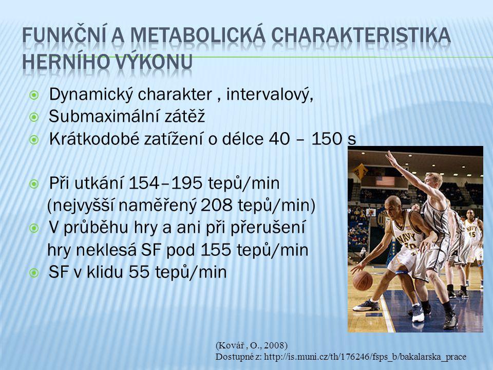 Funkční a metabolická charakteristika herního výkonu