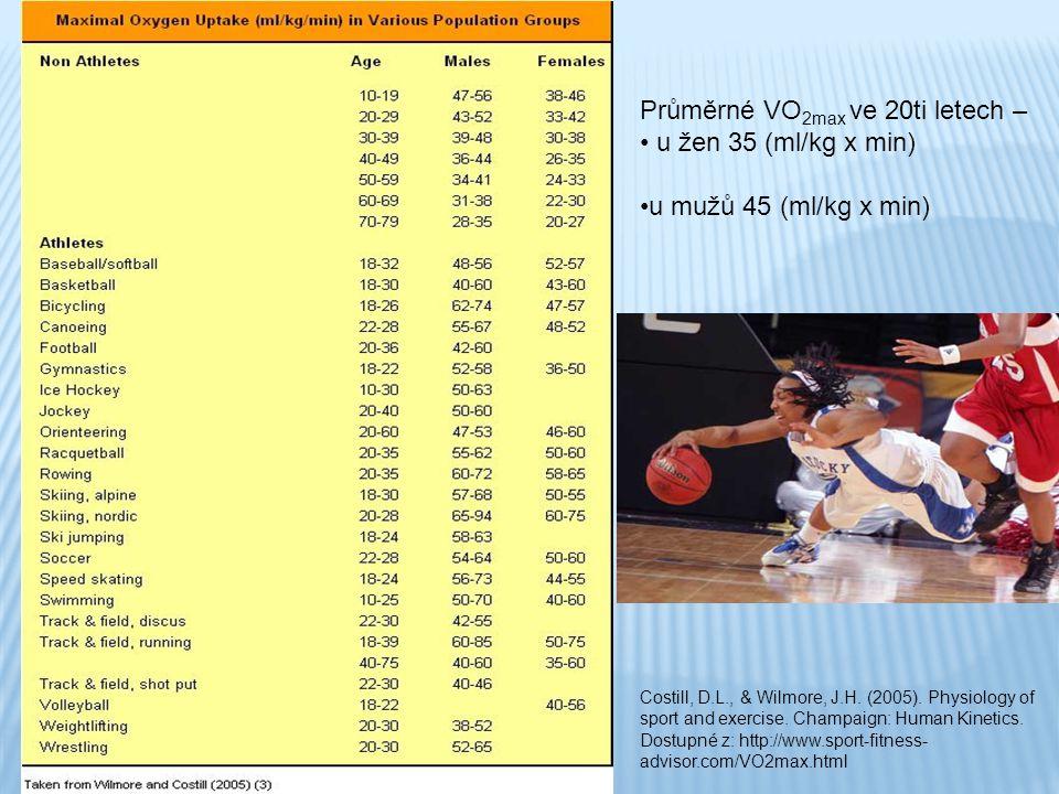 Průměrné VO2max ve 20ti letech – u žen 35 (ml/kg x min)