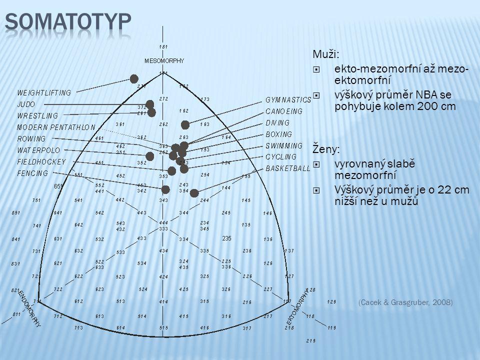 Somatotyp Muži: ekto-mezomorfní až mezo-ektomorfní