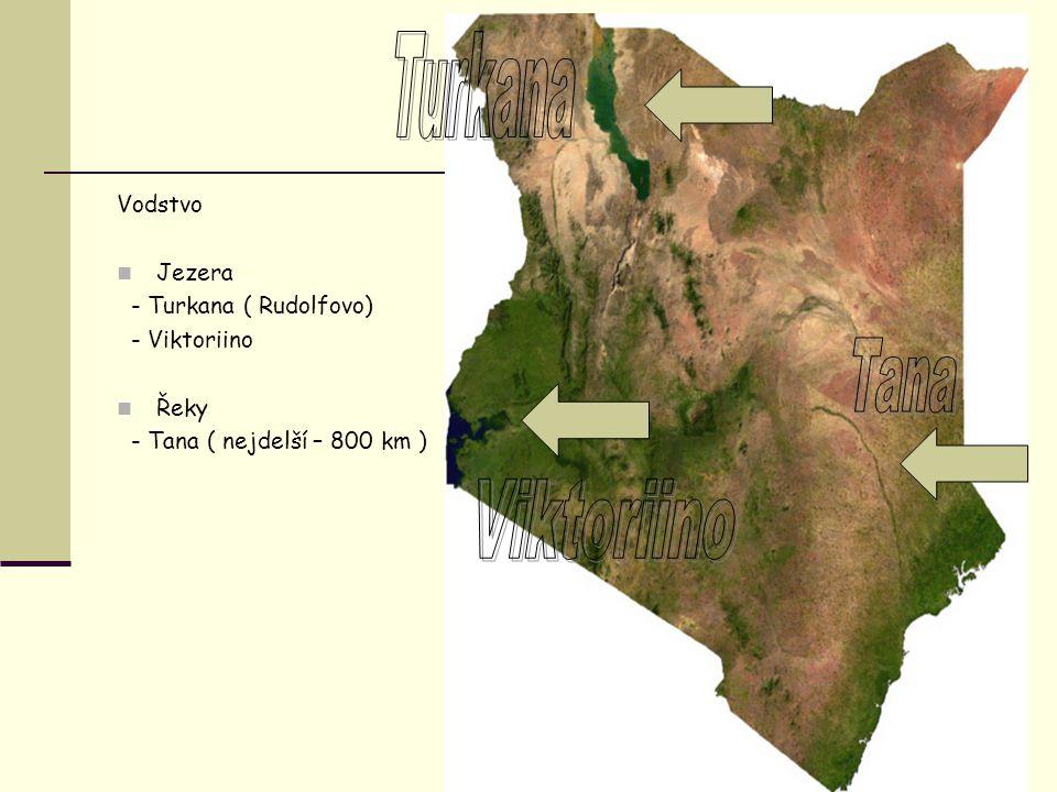 Turkana Tana Viktoriino Vodstvo Jezera - Turkana ( Rudolfovo)