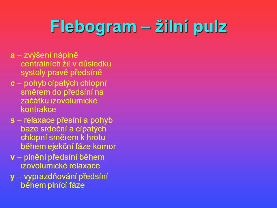 Flebogram – žilní pulz a – zvýšení náplně centrálních žil v důsledku systoly pravé předsíně.