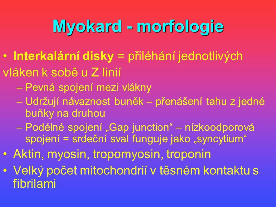 Myokard - morfologie Interkalární disky = přiléhání jednotlivých